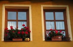 Windows, цветки и тыква Стоковое фото RF