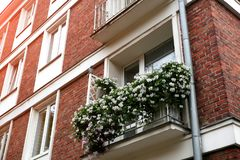 Windows старого городка украшено с цветками стоковые изображения rf