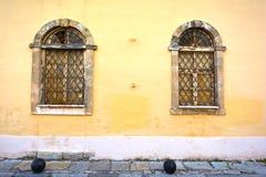 Windows zdjęcie stock