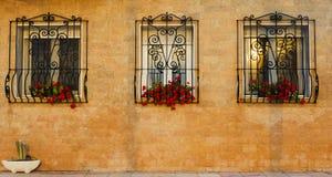 Windows avec des barres en métal de sécurité Photographie stock