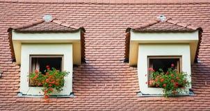 Windows avec des fleurs Images stock