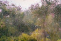 Windows bagnato con il fondo giallo dell'albero Fotografie Stock Libere da Diritti