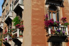 Windows with balcony and flowers Royalty Free Stock Photos