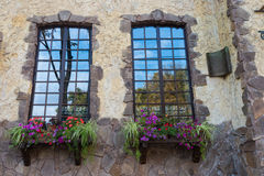 Windows. Beautiful windows in the city with colorful flowers Royalty Free Stock Images