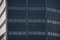 Windows blocchetto moderno di Reykjavik, Islanda Fotografie Stock Libere da Diritti