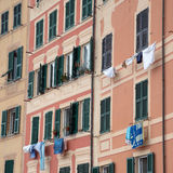 Windows. Of Camogli in June Royalty Free Stock Images