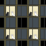 windows and cats Royalty Free Stock Photo