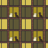 windows and cats Royalty Free Stock Images