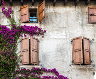 Windows colorful Royalty Free Stock Photography