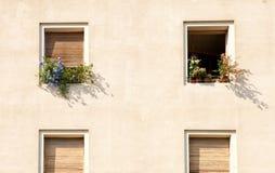 Windows com flores Imagens de Stock Royalty Free