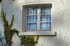 Windows com quadros de madeira Imagem de Stock Royalty Free