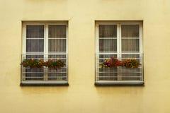 Windows con i fiori Fotografie Stock Libere da Diritti