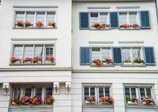 Windows con i fiori Fotografia Stock