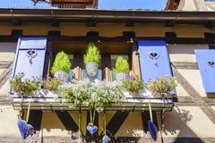 Windows con i fiori nell'Alsazia, Francia Fotografia Stock