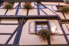 Windows con i fiori nell'Alsazia, Francia Immagine Stock