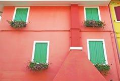Windows con il fiore di windowsill sulla facciata rossa Immagini Stock