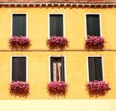 Windows con il geranio Fotografie Stock Libere da Diritti