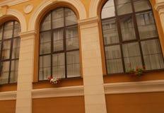 Windows con la cima incurvata fotografie stock libere da diritti