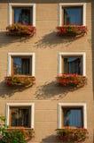 Windows con las flores Imagen de archivo libre de regalías