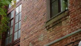 Windows d'une vieille maison de brique un jour ensoleillé banque de vidéos