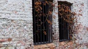 Windows dans une vieille maison Photo libre de droits