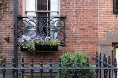 Windows de Boston fotos de archivo libres de regalías