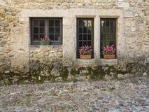 Windows de una casa de piedra vieja en el pueblo medieval Perouge con f Foto de archivo