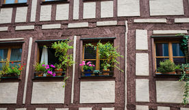 Windows decorated with flowers Royalty Free Stock Image