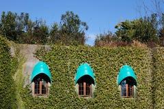 Windows del castillo de Ghibli en Tokio Foto de archivo libre de regalías