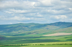 Windows desktop. Grassland like windows desktop background Stock Photos