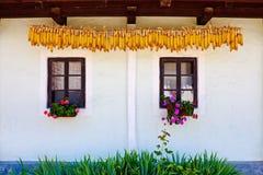 Windows e cereale asciutto Fotografie Stock Libere da Diritti
