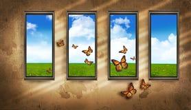 Windows e farfalle Fotografia Stock