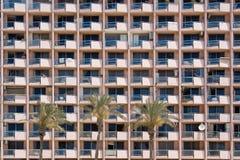 Windows e palma Immagini Stock Libere da Diritti