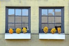 Windows e parede Fotografia de Stock Royalty Free