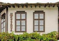 Windows e videira em uma construção bonita Fotos de Stock Royalty Free