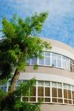Windows eines Gebäudes Lizenzfreie Stockbilder