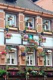 Windows en fleur Images stock