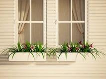 Windows en la casa y las plantas Foto de archivo libre de regalías