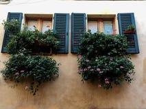 Windows en Toscana Imagen de archivo