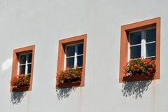 Windows et géraniums Photo stock