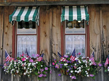 Windows with flags. Flowers and flags in windows Royalty Free Stock Photography