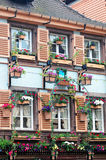 Windows in flower. View of very nice windows in flowers - Colmar, France Stock Images