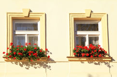 Windows and flower boxes, Prague Royalty Free Stock Photos