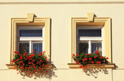 Windows and flower boxes, Prague Royalty Free Stock Photo