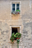 Windows with flower Stock Photography