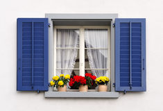 Windows with flowers Royalty Free Stock Photo