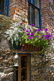 Windows with flowers. Windows of the old house in Arrowtown, Central Otago, New Zealand stock images