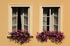 Windows with flowers. Red and pink flowers in window boxes beneath white windows on the front of a house stock photo