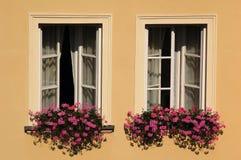 Windows with flowers stock photo