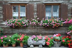 Windows and flowers. Flowers in windows in German town Oberstdorf Stock Photos